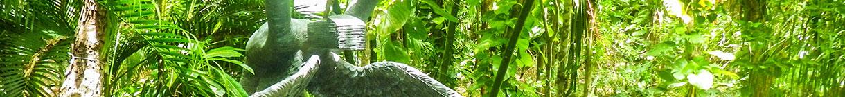 meet-banner