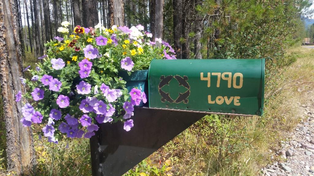 Love Mail box